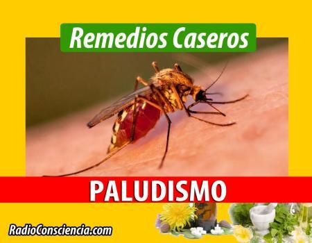 Remedio para el Paludismo