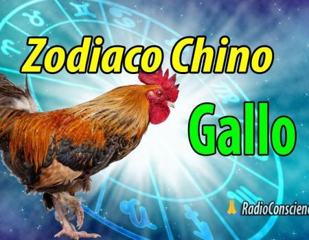 Horoscopo chino Gallo
