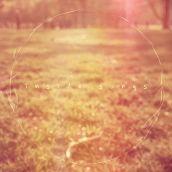 NeedAName-InsideSongs-RadioDAISIE2
