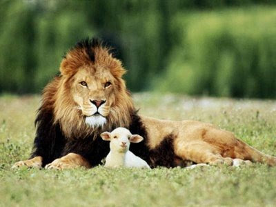 el león y la oveja