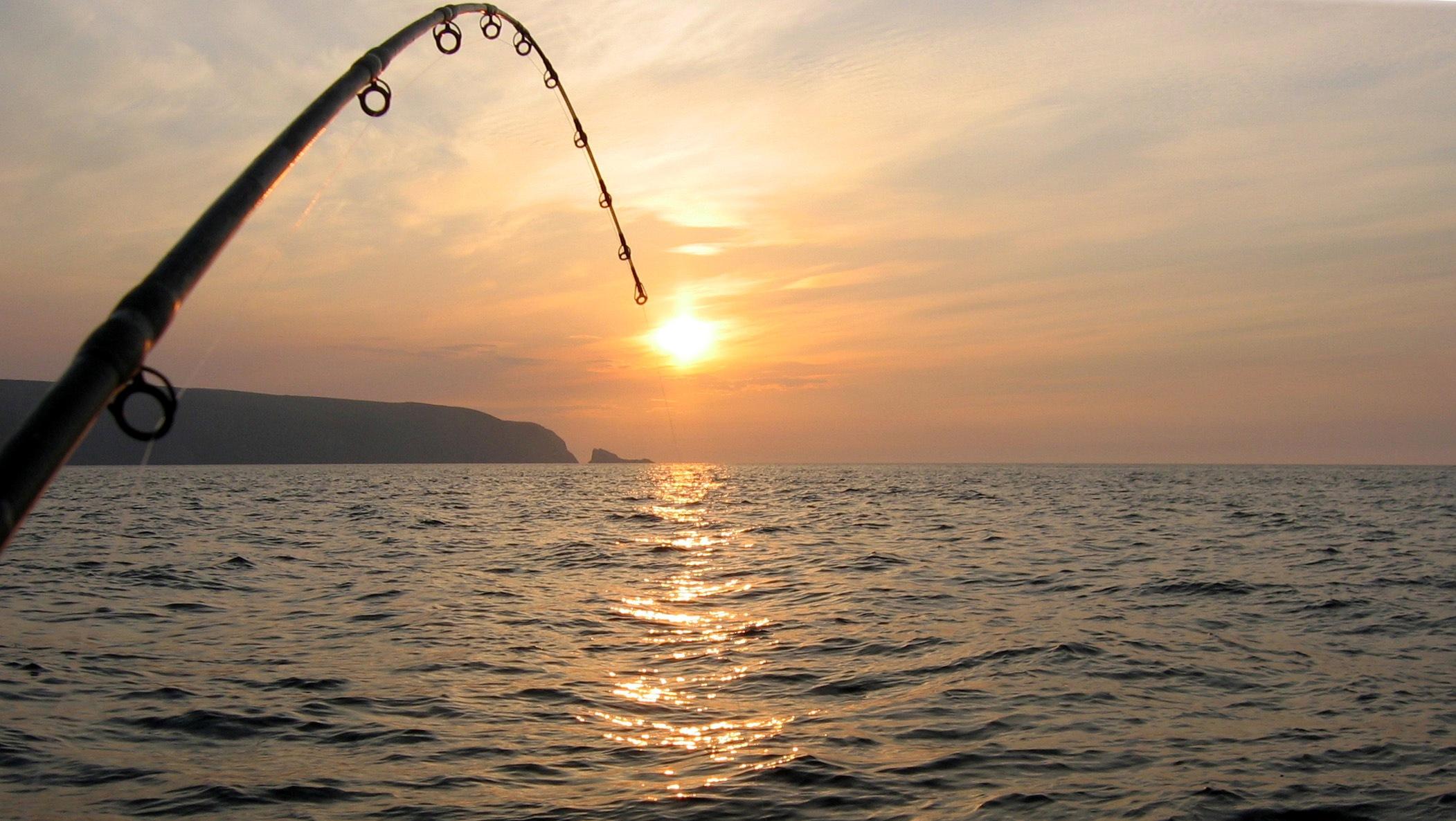 Pescuitul comercial în RBDD – se prelungește valabilitatea actelor