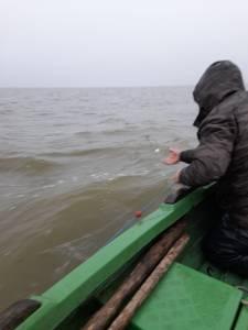 Poliţiştii de frontieră tulceni au confiscat în 48 de ore peste 200 kilograme de pește