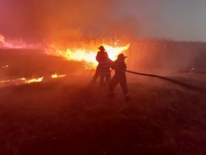 Weekend de foc pentru pompierii tulceni – peste 9 ha afectate