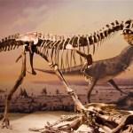 dinosaur_2474599b