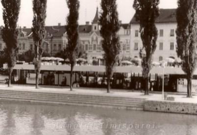 Flora -Timisoara (deschiderea originala)