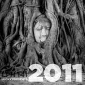 "Lucky Psychic Hut ""2011"", #141"
