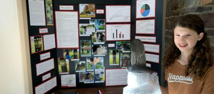 Harleysville teen invents spotted lanternfly trap  5D 3B 5D 5D