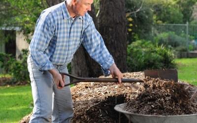 South African Garden Day – Health Benefits of Gardening – 251020