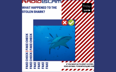 Fake Fact Check – What Happened To The Stolen Shark?