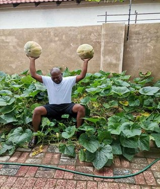 The Cabbage Bandit : How one man started a cabbage revolution