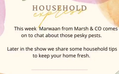 Household Express: This week Marwaan from Marsh & Co comes on to chat about those pesky pests