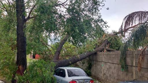 Las fuertes ráfagas ocasionaron importantes daños.