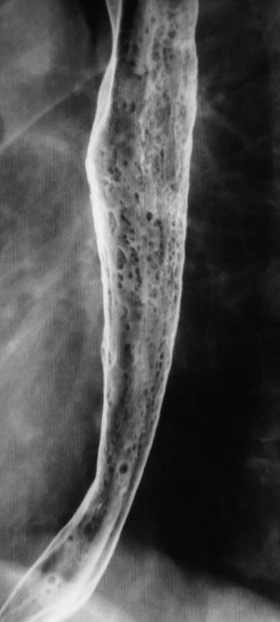 HsuWC1e-ch001-image011