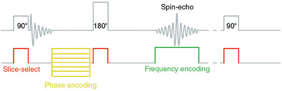 Diagram shows spatial encoding in conventional spin-echo where five blocks are placed with labels for slice-select, phase encoding, and frequency encoding.