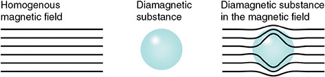 Diagram shows effect of diamagnetic substance on homogenous magnetic field with diamagnetic substance, and diamagnetic substance in magnetic field.