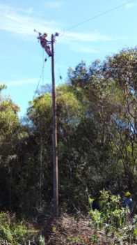 Trabajos Energía de Misiones en Santa Ana