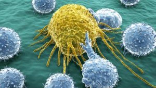 Crean virus que atacan selectivamente células tumorales - 02174452_xl-300x169