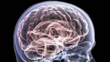 ¿Tienes cerebro de criminal? Un escáner podría delatarte - 02271814-300x169