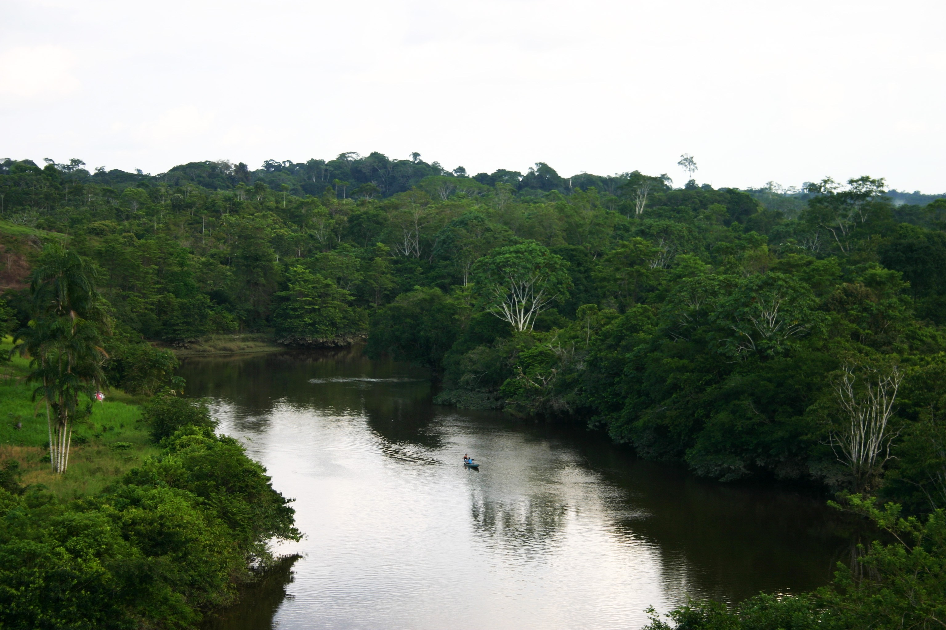 Zona de Reserva Campesina Perla Amazónica (ZRCPA)