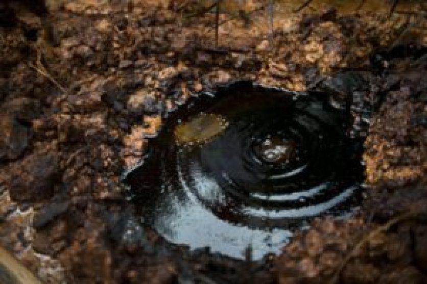 Reportan derrame de crudo en amazonía de Perú - 9405a1977bf77d10edc1855b5561190b266e6c2a-300x200
