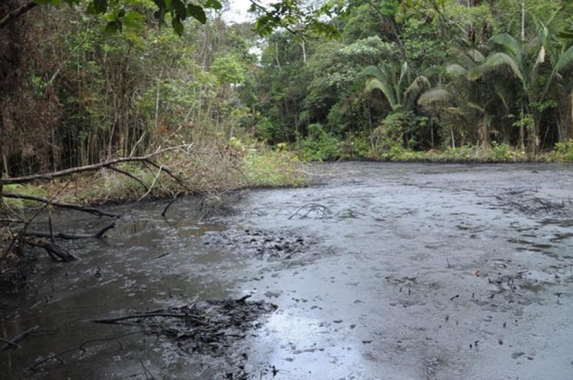 Zona contaminada del río Amazonas. / UAB