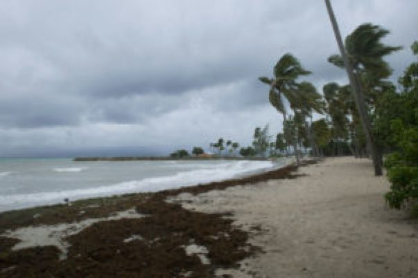 Aumento del nivel del mar puede sumergir 13.000 sitios históricos de EEUU (estudio) - 376b7a8a041019b7d66034debf5a7ab043a69554-300x200