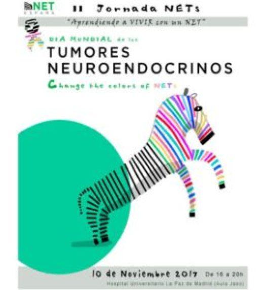 Tumores neuroendocrinos: el empeño de hacerlos visibles - NET3-271x300
