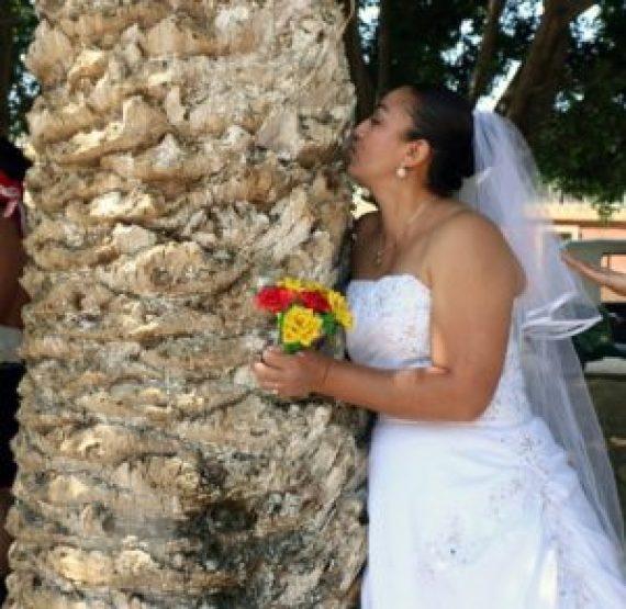 Ambientalista peruano promueve boda colectiva con árboles en México - 837fb45d50a02575c6df58f0de19523eb1e3a9a3-300x292