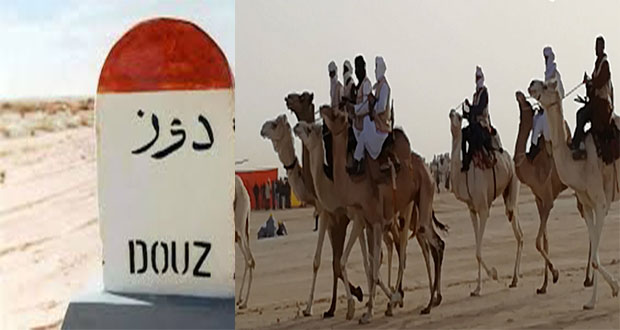 دوز: برنامج ثري للدورة الدولية لسباق المهاري والقرية الحرفية بمتحف الصحراء تميز الدورة
