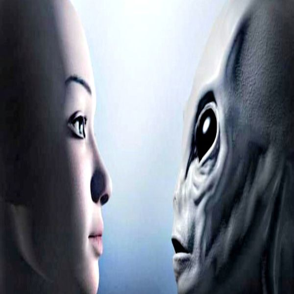 As 5 Principais Raças Extraterrestres em Contato Com a Terra Atualmente: O Que Você PrecisaSaber