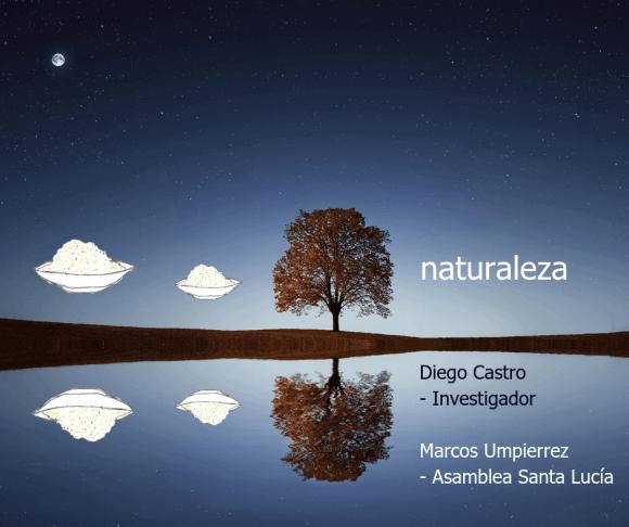 Desnaturalización de la naturaleza