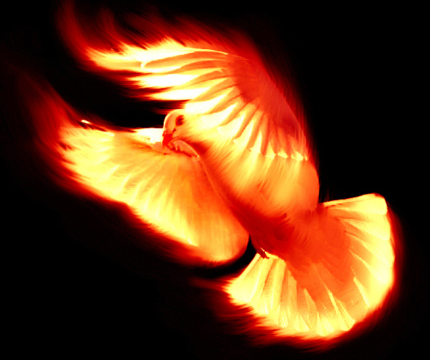 Resultado de imagen de espíritu santo fuego