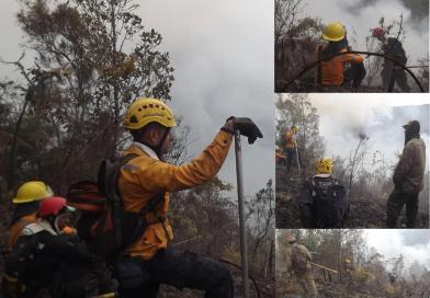 Continua incendio forestal en Parque Nacional Macarao.