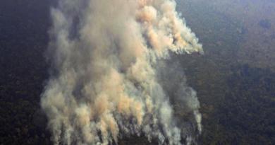 Tras presión Internacional, Bolsonaro prohíbe la quema en Brasil por 60 días