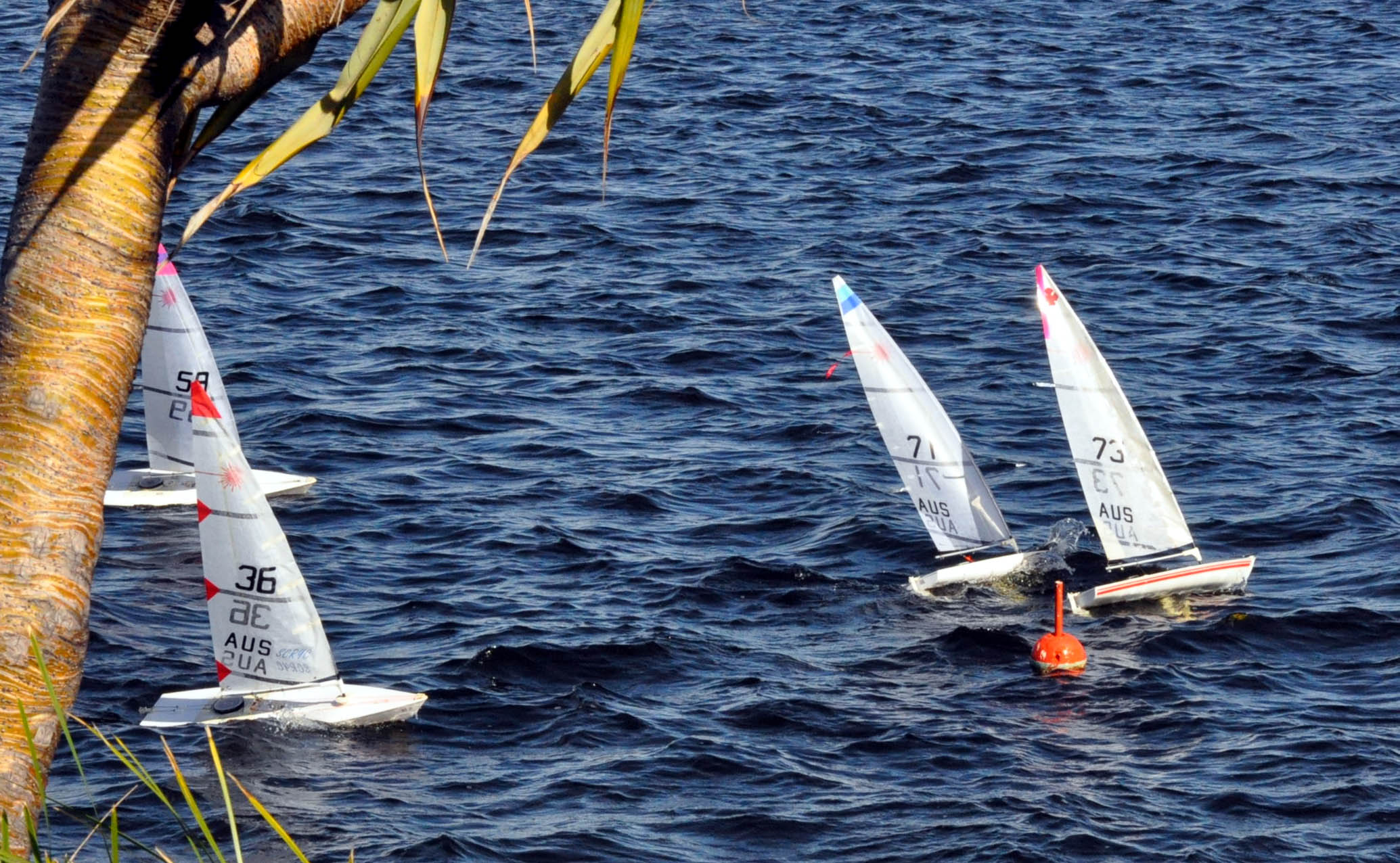 Queensland RC laser state championships