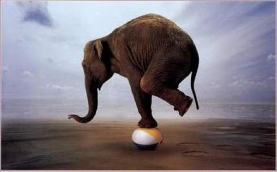 p_equilibrismo