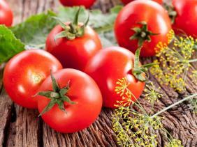 صورة الطماطم فاكهة تحمي القلب وتكافح السرطان