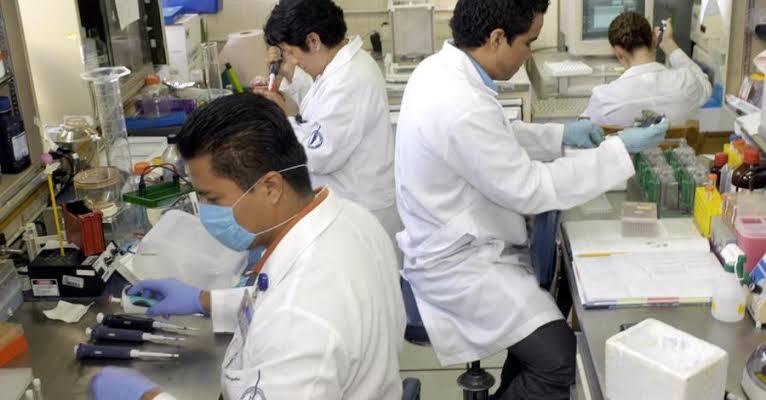 UNAM CREA MODELOS PARA CURAR EL CÁNCER