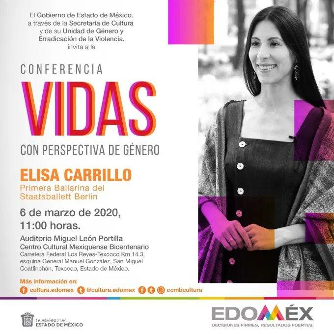 """ELISA CARRILLO """"VIDAS CON PERSPECTIVA DE GÉNERO"""""""