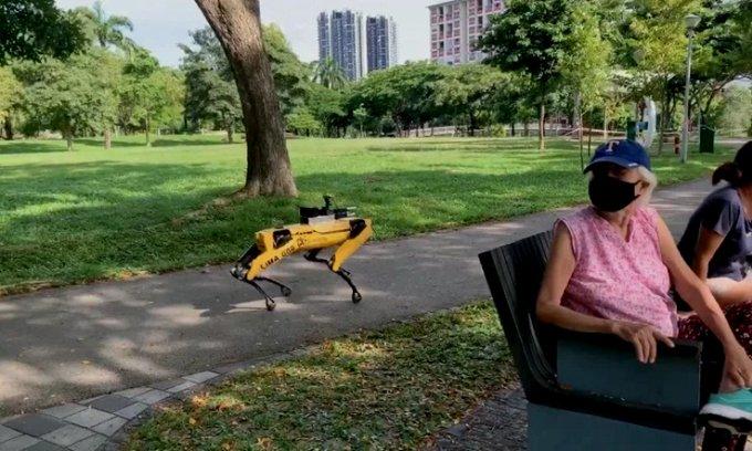 PERRO- ROBOT MANTIENE LA SANA DISTANCIA EN LOS PARQUES DE SINGAPUR