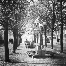 Day4_RowOfTrees_with_StreetLamps_PalackehoSquare