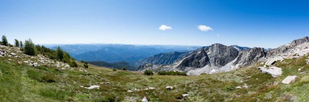 High alpine meadow