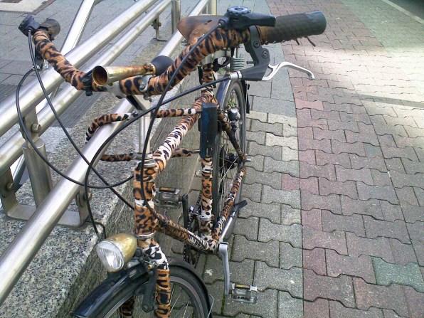 duesseldorf-fahrrad-tiger