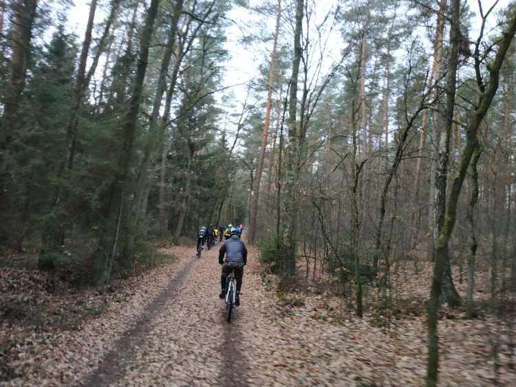 Durch den Veerßer Wald Richtung Holdenstedt
