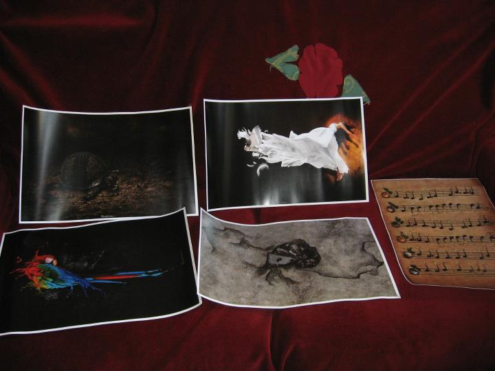 papergirl-brasov-2011-01