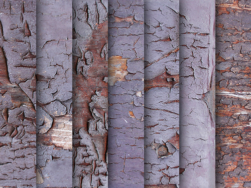 texture-exfoliated-wood-paint
