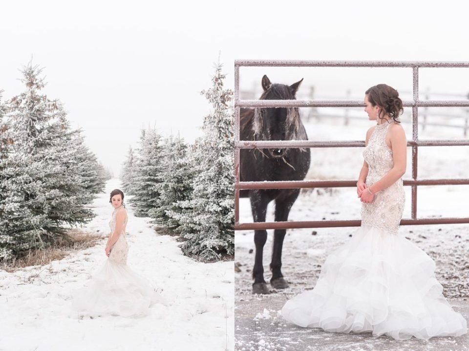 Madison Winter Grad Session- Raelene Schulmeister Photography- Red Deer Photographers- graduation photos with horse