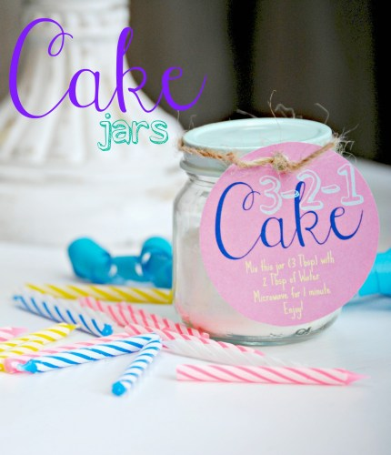 DIY Cake In A Jar - Just Add Water - 3-2-1 Cake