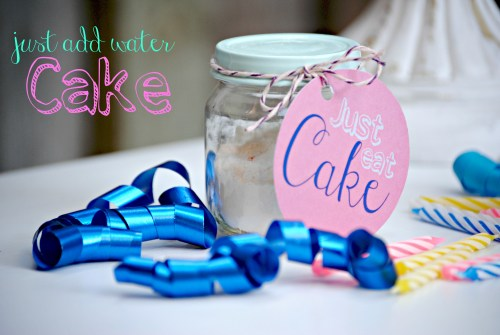 DIY Cake In A Jar // Just Add Water // 3-2-1 Cake