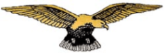Pathfinder Collection - PFF eagle
